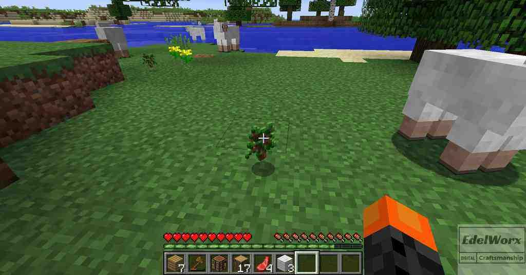 Minecraft Einsteiger Anleitung : Tag 2 Schafe scheren um Wolle zu erhalten und jagen