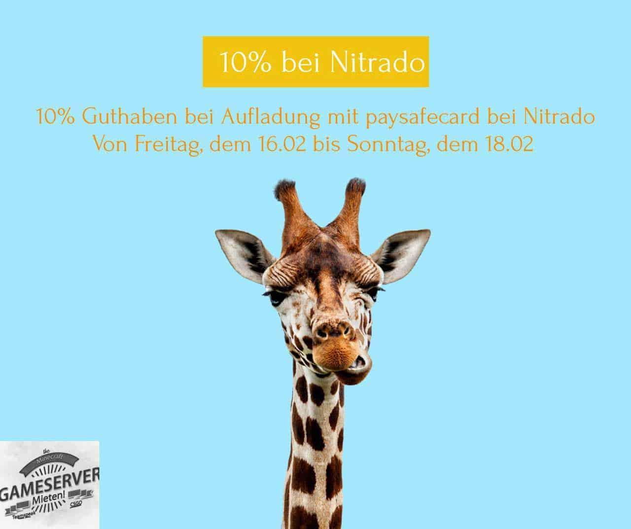 lustiges Bild mit Giraffe wirbt für 10% Gutschein