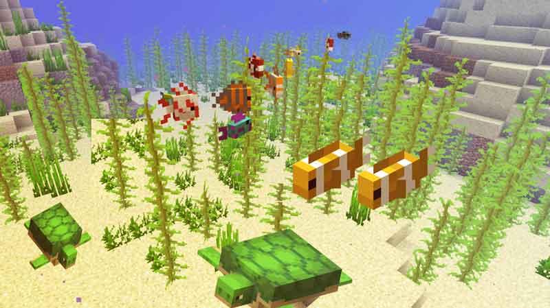 Unterwasserwelt von Minecraft 1.13 Update zeigt neue Meerbewohner und Pflanzen